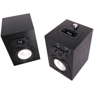 - Speaker System