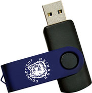 - Swivel Connecticut 4GB USB 20 Flash Drive
