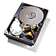 IBM          09N4231