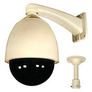 SLC-176 Surveillance/Network Camera - Color, Monoc