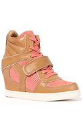 ASH 