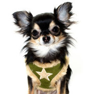 Hip Doggie Fur Star Harness Vest For Dogs