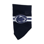 Penn State Nittany Lions Official Dog Collar Banda