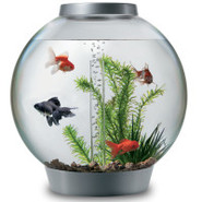 biOrb 8 Gallon Silver Aquarium Starter Kit