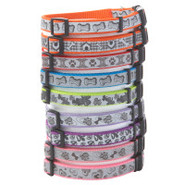 Coastal Pet Products Personalized Reflective Nylon
