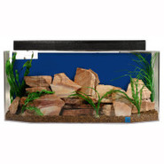 SeaClear 26 Gallon Flat Back Hex System II Aquariu