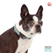 Martha Stewart Bone Print Dog Collar