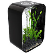 biOrb Life 45 Designer Black 12 Gallon Aquarium