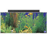 SeaClear 30 Gallon Show Tank and Hood