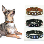 Hip Doggie Cowboy Collars for Dogs