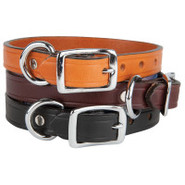 Top Paw Single Ply Leather Dog Collars
