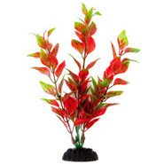 Top Fin Red & Green Natural Plant