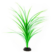 Top Fin Green Grass Plant