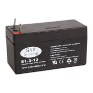 Power Pet 12V Rechargeable Battery