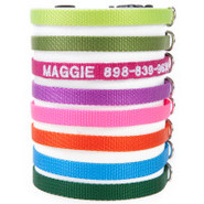 Coastal Pet Products Personalized Adjustable Nylon