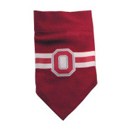 Ohio State Buckeyes Official Dog Collar Bandana