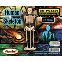 Human Skeleton 3D Puzzle Wood Craft Construction K