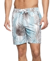 Swimwear, Island Palm Print Swim Trunk