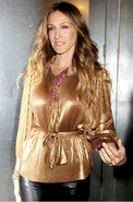 Lame Jersey Pleated Long Sleeve Blouse in Gold