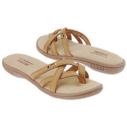 Bass 