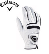 Men's Tour Authentic Gloves Rh