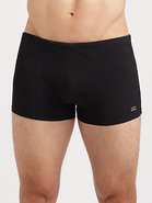 Oyster Swim Shorts