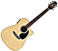 EG530SC Acoustic-Electric Cutaway Guitar