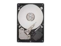 1TB 7200RPM 64MB CACHE SATA/600 (ST1000DM003)