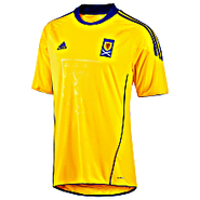 Scottish FA Away Jersey