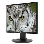 LG 19  E1910T-BN LED-LCD Monitor, Black